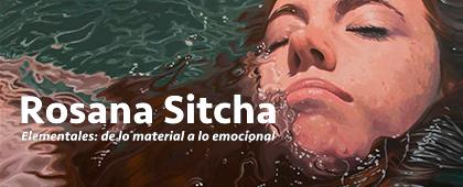 ELEMENTALES: DE LO MATERIAL A LA EMOCIONAL de Rosana Sitcha. Hasta el 22 de abril